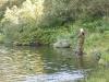 Ein tålmodig fiskar ventar på napp.